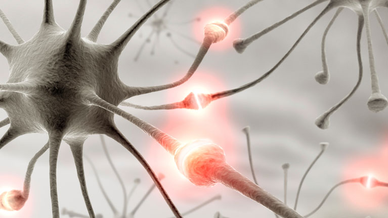 Neurorehabilitation, robotics, technological solutions