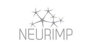 Proyecto NEURIMP