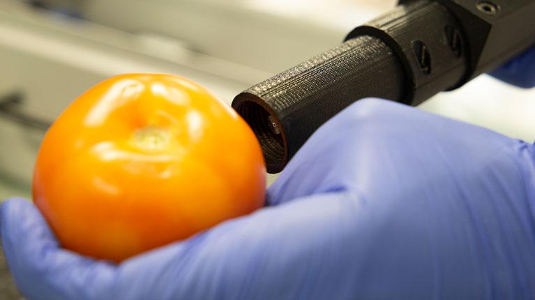 Meditomato, tomate, agroalimentario, calidad alimentaria